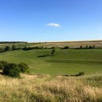 Widdington Shoot - farm